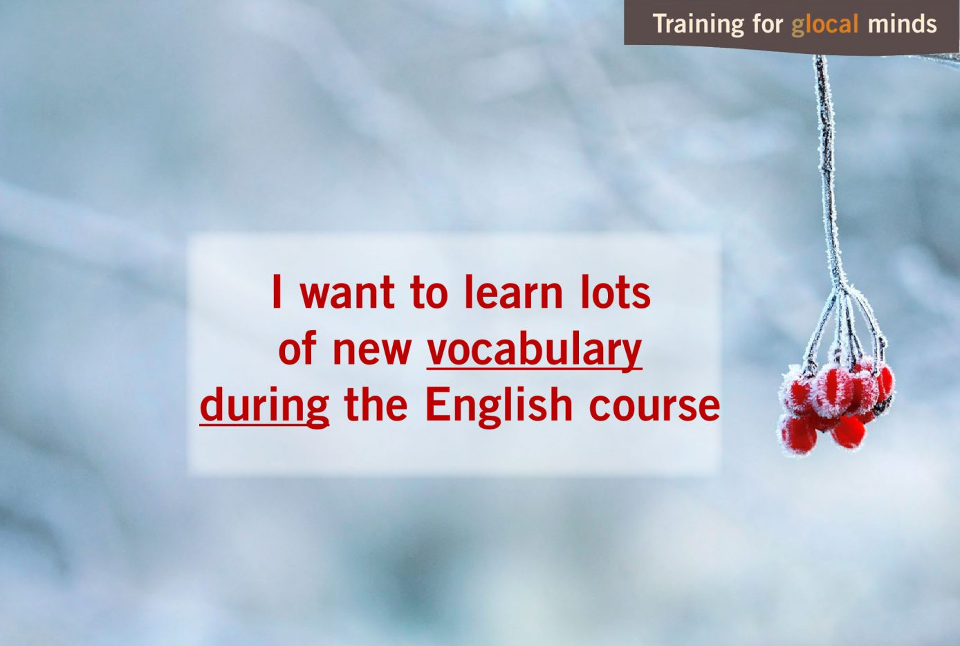 I want to learn lots of new vocabulary during the English course