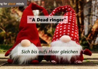 """SPIDI Adventkalender Tür 9: """"A dead ringer"""" (gleichen sich bis aufs Haar)"""